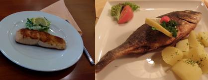 ryby - omega-3 mastné kyseliny